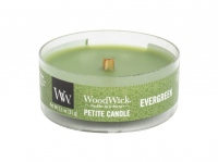 Woodwick Evergreen 31g