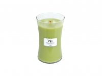 WoodWick Fern 609,5 g
