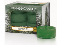 Yankee Candle Evergreen Mist 12 x 9,8g